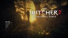 witcher2-2011-04-25-00-06-23-082
