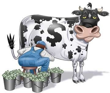 I wish we had a cash cow