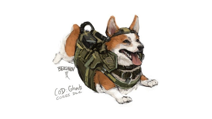 Corgi of duty