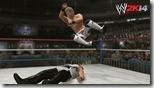 WWE (14)