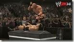 WWE (20)
