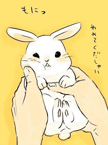 Bunnies (8)