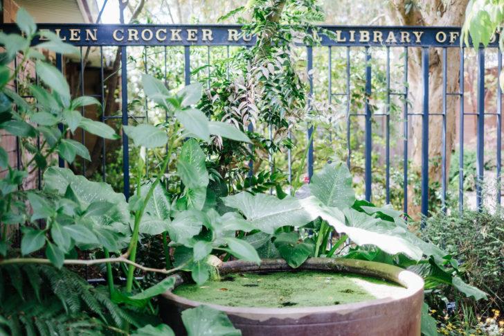 Botanical-garden00005