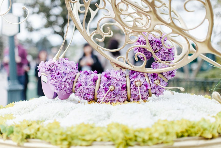 Disneyland spring 2016-3