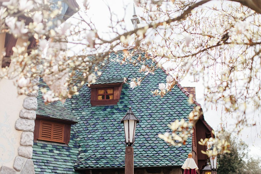 Disneyland spring 2016-5
