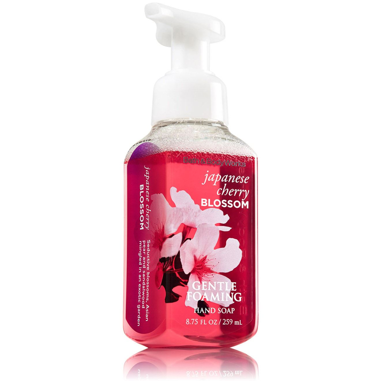 Bath Amp Body Works Deep Cleansing And Gentle Foaming Hand