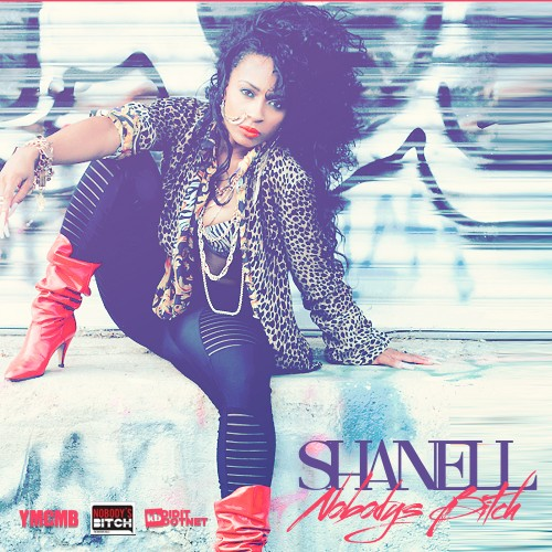 https://i2.wp.com/images.livemixtapes.com/artists/ymcmb/shanell-nobodys_bitch/cover.jpg
