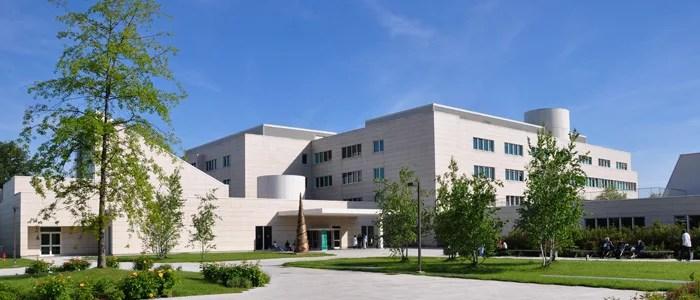 una nuova universit di medicina si chiama humanitas