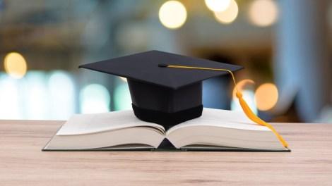 università di palermo almalaurea 2020