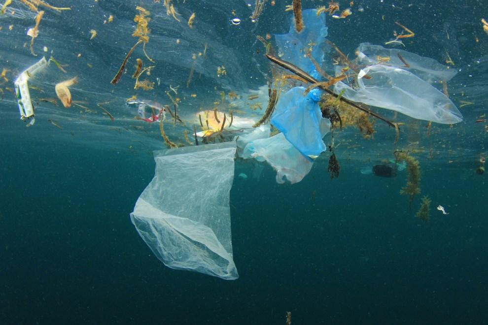 Sicilia, l'Ars vuole dire no alla plastica: il ddl per un'Isola plastic free  – LiveUnict