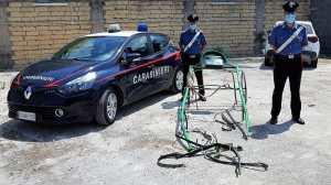 corsa clandestina carabinieri