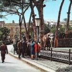 Elefante Tony alla Villa Bellini