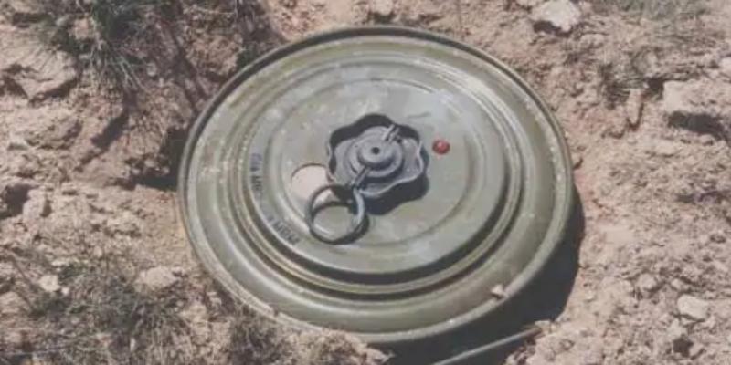 mina anticarro