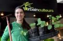 Une boutique en ville pour les Urbainculteurs