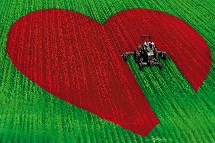 Le quart des agriculteurs québécois de moins de 35 ans sont seuls... (Photomontage La Presse)