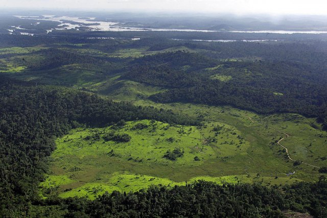 Durant des milliers d'années, des animaux géants ont fertilisé le bassin de... (PHOTO ANTONIO SCORZA, ARCHIVES AFP)