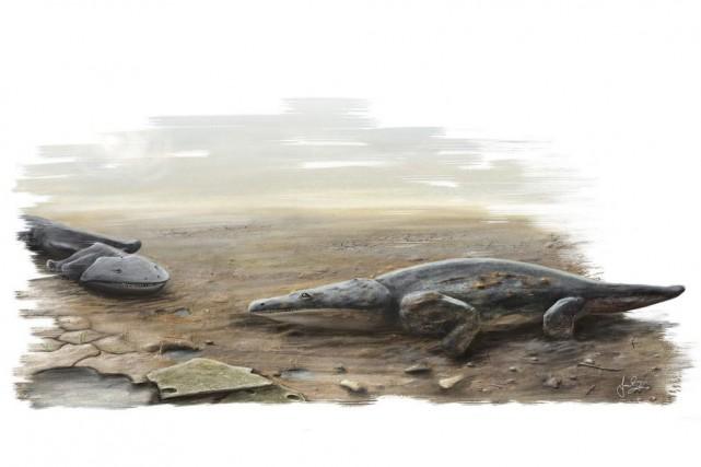 Des représentations d'espèces de «super salamandres» qui vivait... (PHOTO ASSOCIATED PRESS)