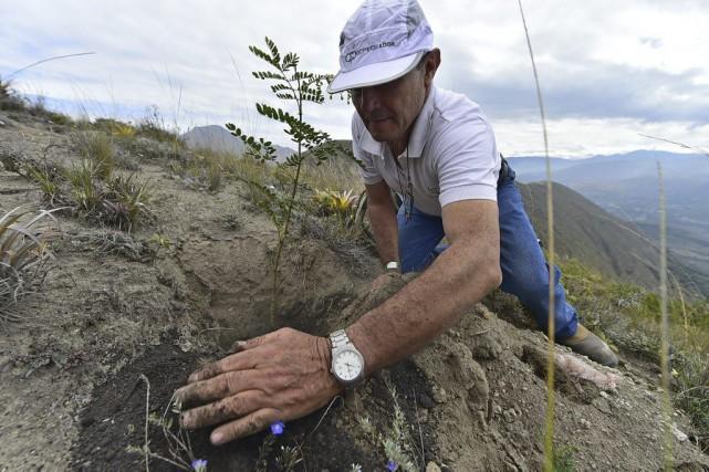L'Équateur a établi samedi un record mondial en matière de reforestation en... (PHOTO RODRIGO BUENDIA, AFP)