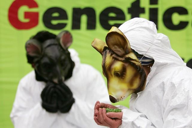 Des souris OGM ne produisant que des mâles?... (Photo Francois Lenoir, archives REUTERS)