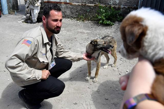 Un projet d'adoption de ces animaux a été... (Sergei SUPINSKY, AFP)