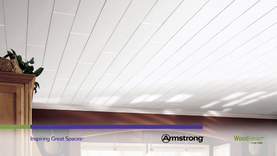 Armstrong Ceiling Planks You
