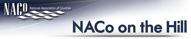 NACoLogoTM(1).png