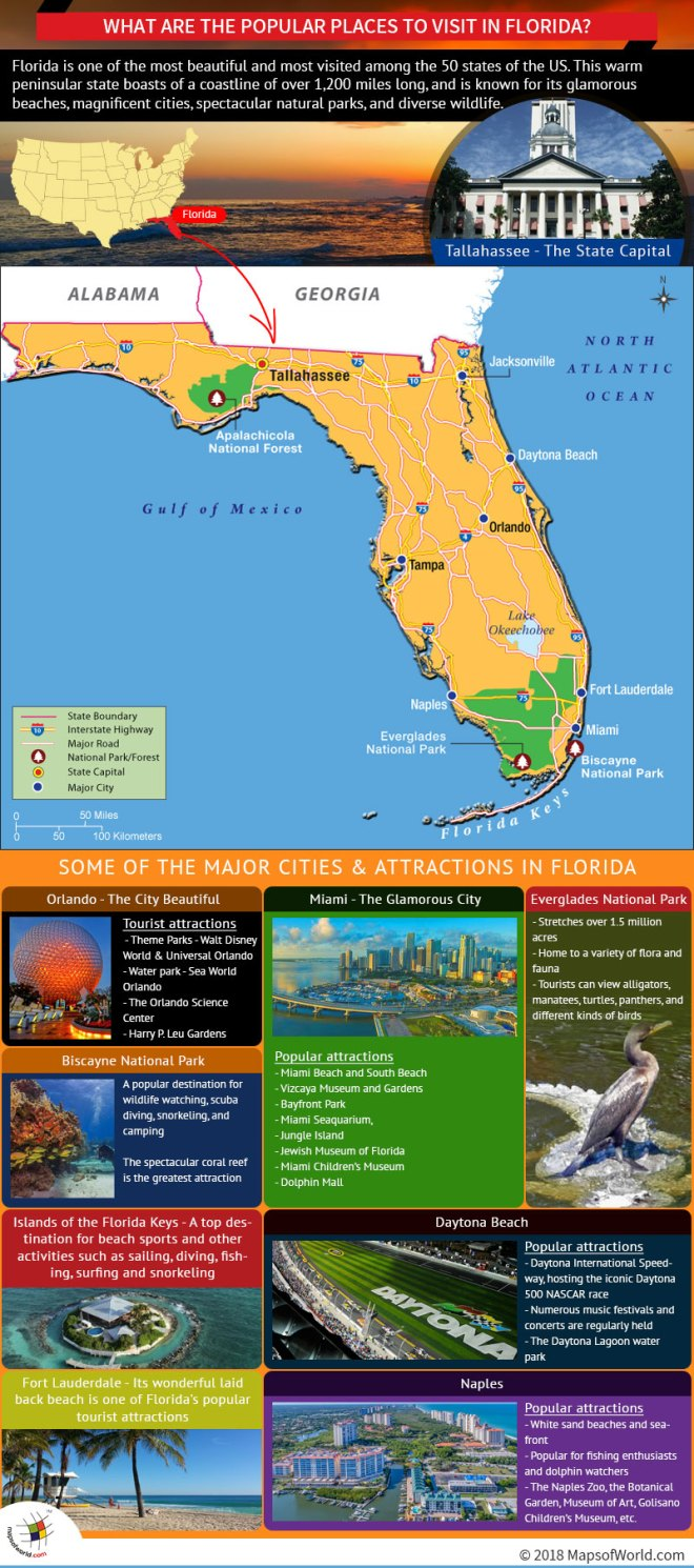 Infographic – Popular Places to Visit in Florida