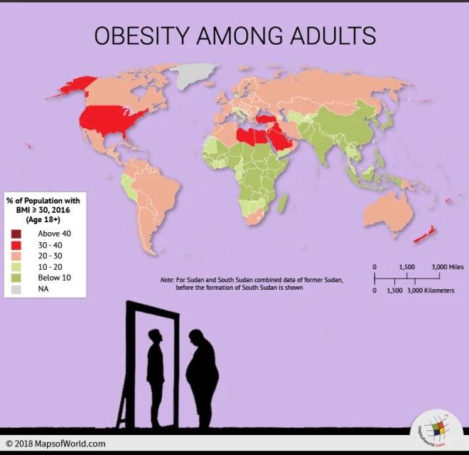 World Map depicting obesity among adults