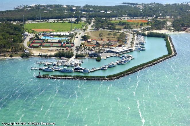 Plantation Yacht Harbor In Islamorada Florida United States