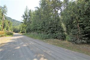 Photo of 13654 Constitution Drive, Palmer, AK 99645 (MLS # 19-12081)