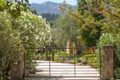 Tiny photo for 1330 Whitehall Lane, Saint Helena, CA 94574 (MLS # 321030198)