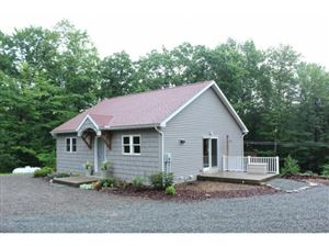 Photo of 150 RANSOM ROAD, CHENANGO FORKS, NY 13901 (MLS # 221410)