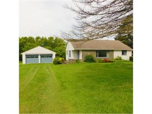Photo of 5085 STATE HIGHWAY 41, GREENE, NY 13778 (MLS # 220664)