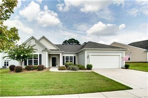 Photo of 4093 Ambleside Drive, Indian Land, SC 29707 (MLS # 3535400)