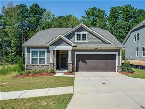 Photo of 14018 Goldenrod Trace Road, Charlotte, NC 28278 (MLS # 3552605)