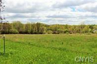 Photo of 4406 Kasson Road, Syracuse, NY 13215 (MLS # S1258617)