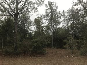 Photo of 17 Acres Macedonia Church Road, Defuniak Springs, FL 32435 (MLS # 835390)