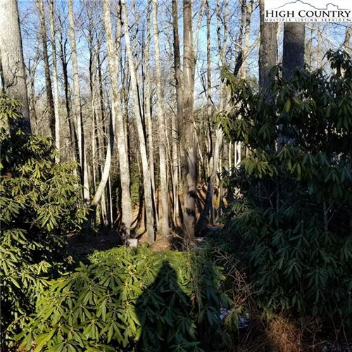 Tiny photo for Lot 40 Twin Branches Road, Blowing Rock, NC 28605 (MLS # 220053)