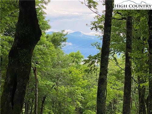 Tiny photo for Lot 12 Chappell Farm Road, Banner Elk, NC 28604 (MLS # 231087)