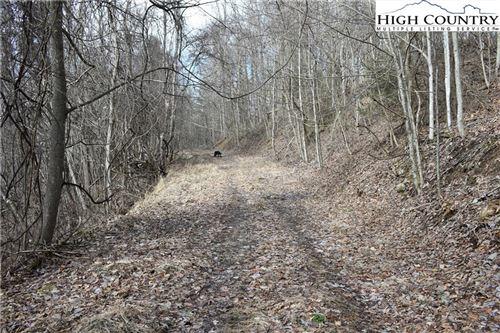Tiny photo for TBD Kellersville Road, Banner Elk, NC 28604 (MLS # 228304)
