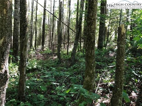 Tiny photo for C42 Three Ash Loop, Blowing Rock, NC 28605 (MLS # 226309)