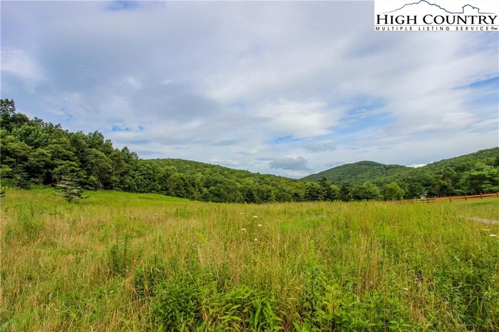 Photo for 17.287 Acres Woodland Springs Lane, Boone, NC 28607 (MLS # 233730)
