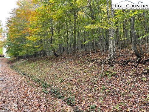 Tiny photo for 115 S Upper Snowbird Trail, Beech Mountain, NC 28604 (MLS # 233731)