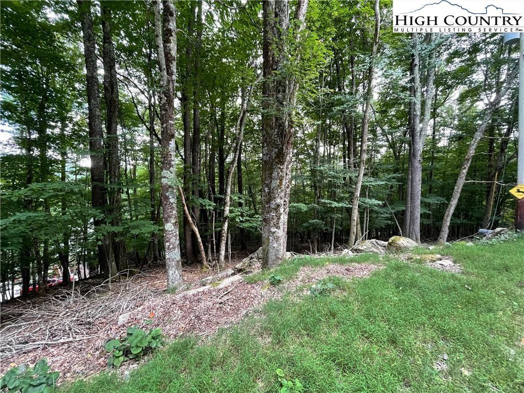 Photo for 105 Strawberry Lane, Beech Mountain, NC 28604 (MLS # 233735)