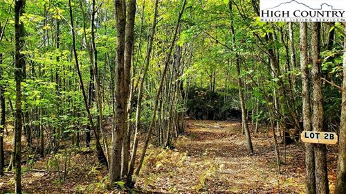 Tiny photo for Lot Two-B Whispering Pines Road, Boone, NC 28607 (MLS # 233796)
