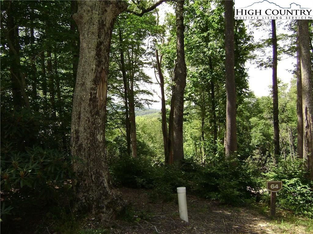 Photo for Lot 64 Mountain Breeze Knoll, Blowing Rock, NC 28605 (MLS # 230907)