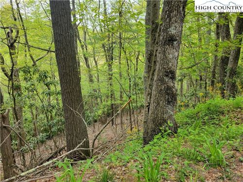 Tiny photo for TBD Tracts #1 and #2 Teaberry Hills Road, Boone, NC 28607 (MLS # 230967)