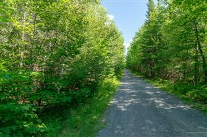 Photo of Lot 22 Schoodic Point Road, Medford, ME 04463 (MLS # 1429802)