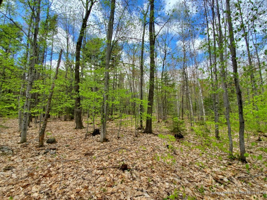 Photo for M9 L41 Sand Hill Road, Smithfield, ME 04978 (MLS # 1406979)