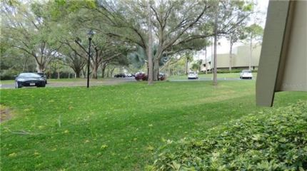 Tiny photo for 36750 US HIGHWAY 19 N #14110, PALM HARBOR, FL 34684 (MLS # U8074048)